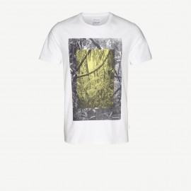 Camiseta James Rainforest